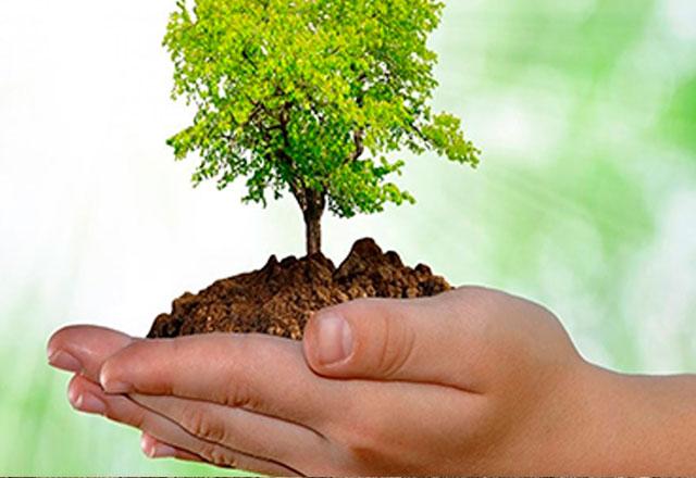 lineas_negocios_cingetec_ingenieria_tecnologia_medio_ambiente